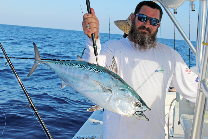 Shawn McCarty beat up on this bonito after it ate his live sardine.