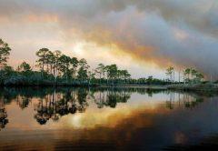 The beauty of Florida's Forgotten Coast.