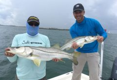 Rick Renfroe and John Denninghoff landed this nice pair of snook on live baits at the Canaveral jetty.