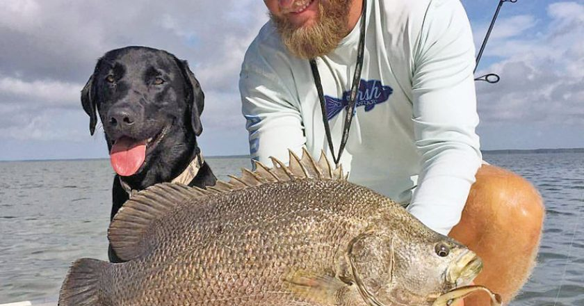 Capt. Jordan Todd and Murphy dog with a nice triple tail.