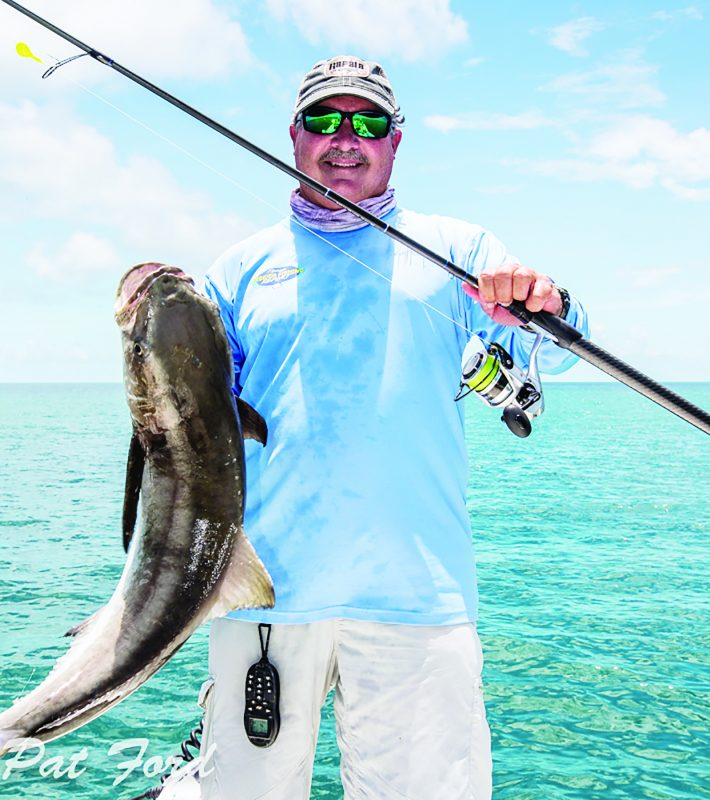 Cobia are another species that may be found during the mullet run this month.