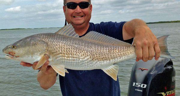 Coastal angler magazine naples edition coastal angler for Chokoloskee fishing report
