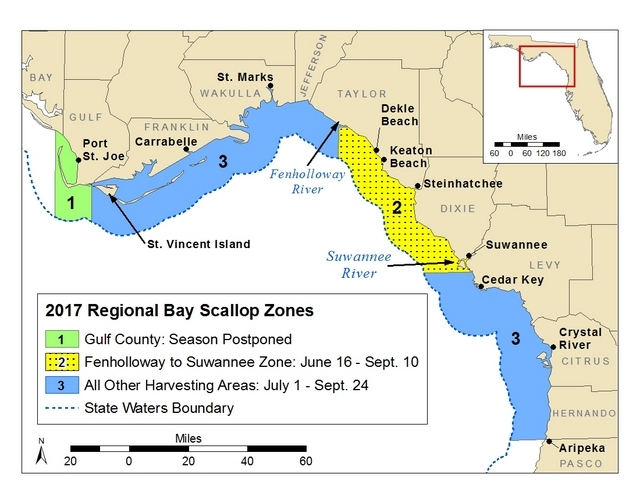 Reminder 2017 bay scallop season closure starts sept 25 for Nc saltwater fishing regulations 2017
