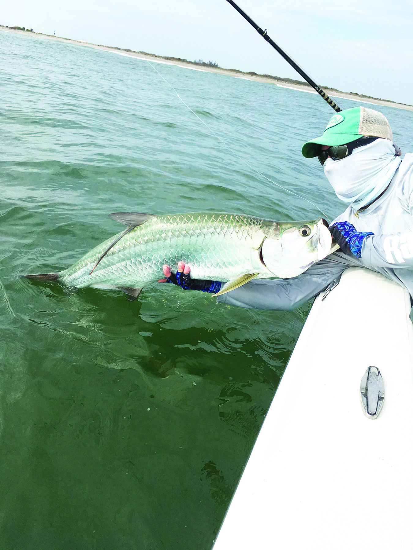 If the water conditions stay fairly warm, Baby tarpon may be one of the species anglers can expect at Canaveral this month.