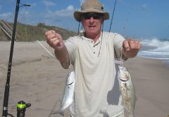 Mike during a Bluefish Blitz was catching the blues two at a time.