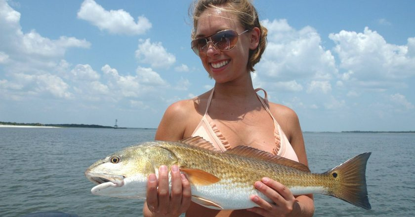 Nefl fernandina amelia island fishing reports archives for Amelia island fishing report