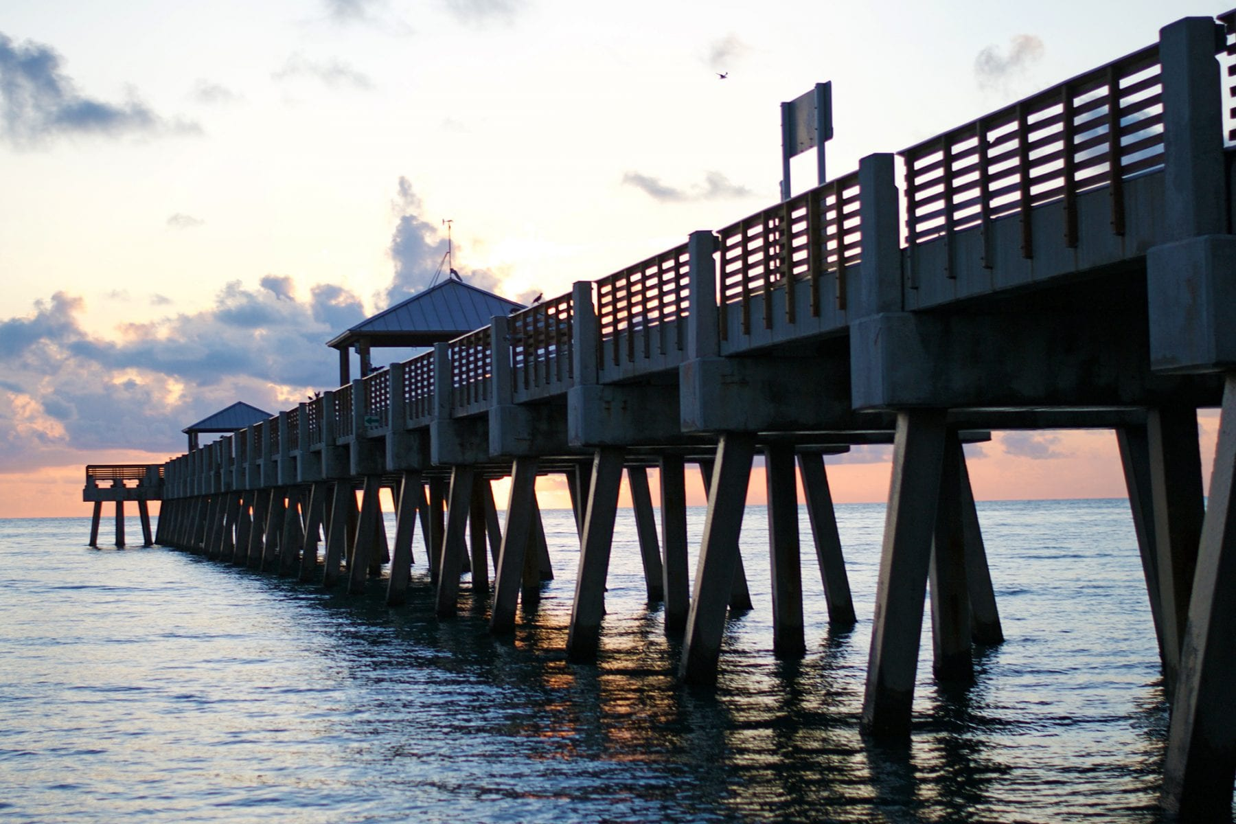 Juno beach pier fishing forecast february 2018 coastal for Juno pier fishing report