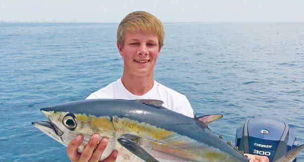 Yes, blackfin tuna eat shrimp.