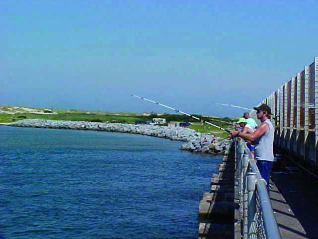 Obx inshore march 39 18 coastal angler the angler magazine for Lynnhaven fishing pier report