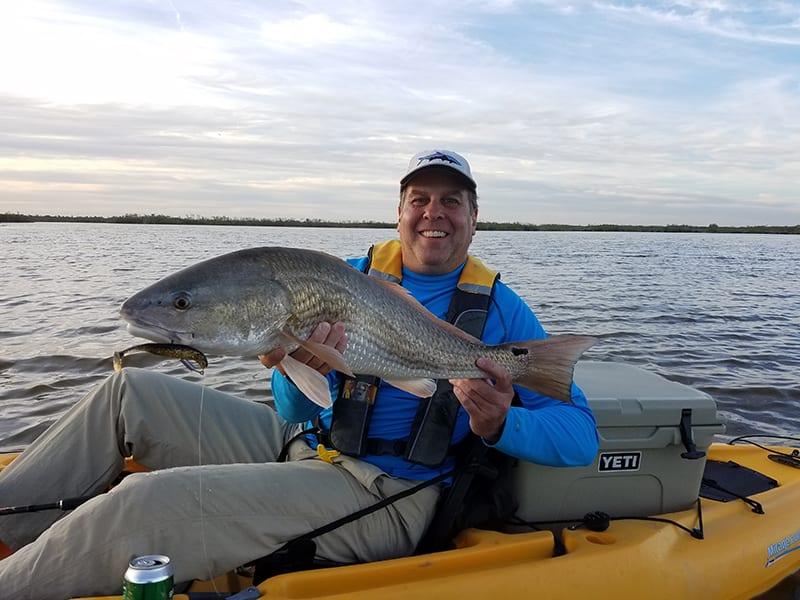 Redfish are always welcome bycatch when seatrout fishing with soft plastics on a Local Lines charter trip.