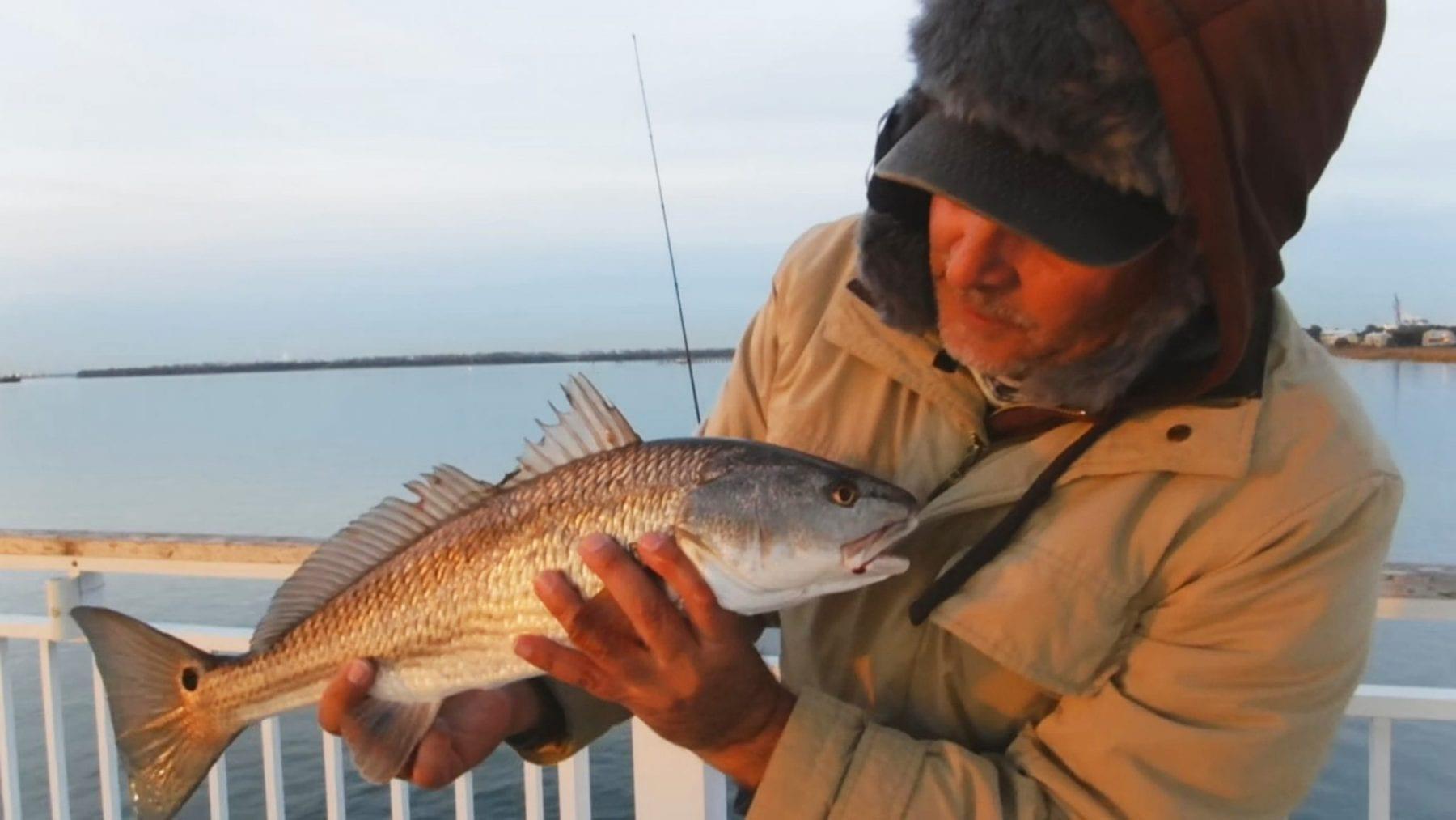 Mount pleasant pier april fishing forecast coastal for Mt pleasant fishing pier