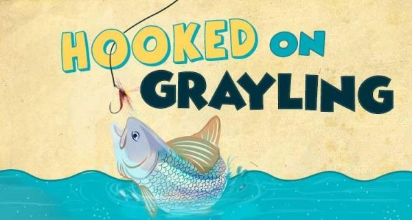 Hooked on grayling