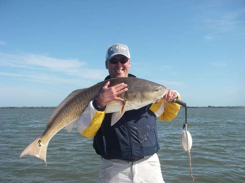 Bill battled a huge lagoon monster on a recent trip with Capt. Mark Wright. The 45 inch beast ate a Z-Man Diezel Minnowz and fought hard for nearly thirty minutes!