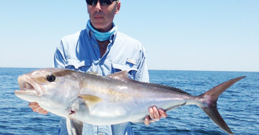 CAM Co-publisher Paul Caruso takes a day off from the magazine to catch an Amberjack with Underdog Fishing Charters.