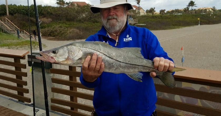 Juno pier fishing reports archives coastal angler the for Juno pier fishing report