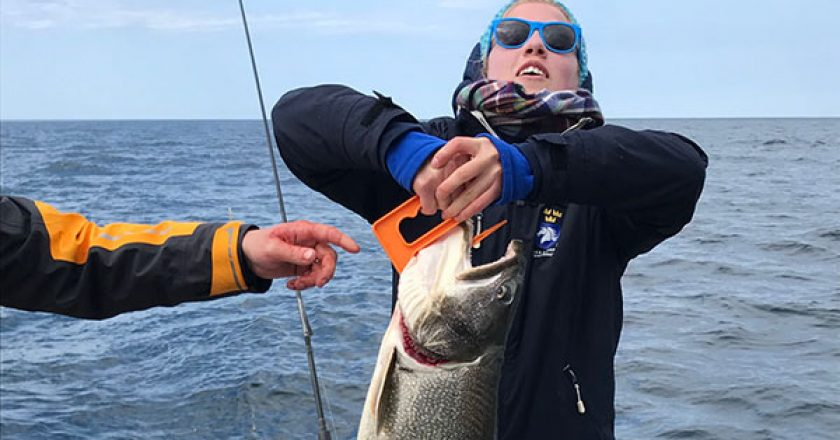 West michigan fishing reports archives coastal angler for Grand haven fishing report