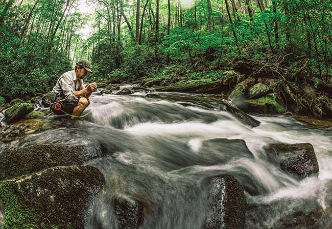Hendersonville: Best Kept Secret For Trout Anglers in