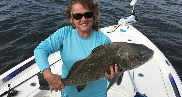 Diane Eford fed a live shrimp to this chunky black drum.