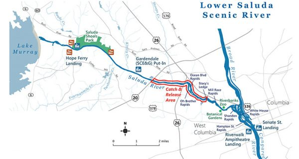 S.C. Protects Spawning Trout In Lower Saluda