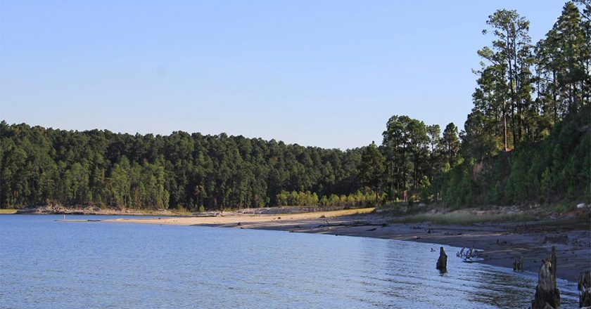 Rayburn Lake The Best Bass Lake In The Country by Bassmaster
