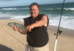Richard caught this great looking bluefish in November 2017 on the Brevard County Beaches.
