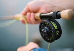 Fly Fishing Speed: How Fast Should You Retrieve The Fly?