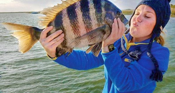 Charleston Sheepshead Offer Southern Hospitality