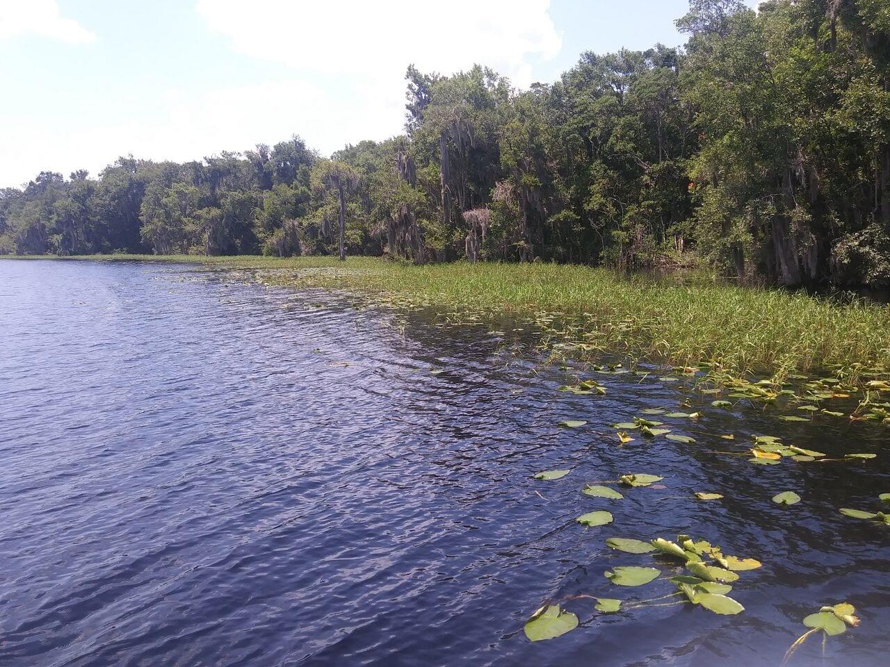 Florida Waterways Lake Alto Coastal Angler Amp The