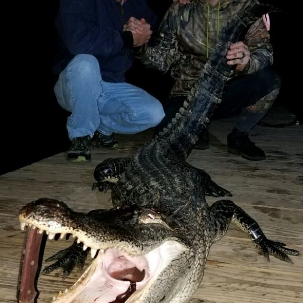David Meredith (left) and Josh Korel (right) show off a gator they caught on the Escambia River.