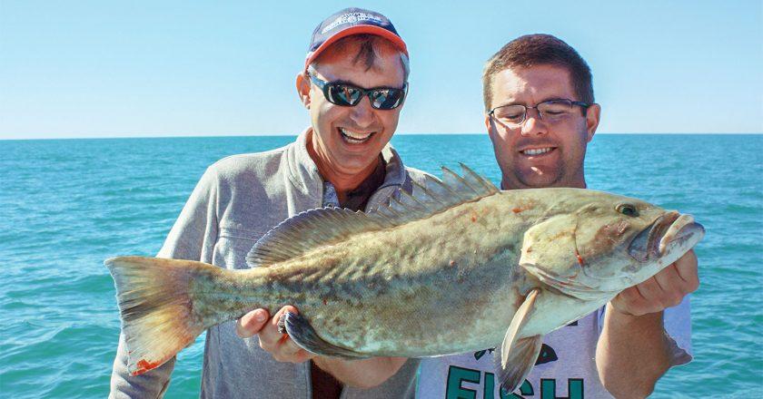 Gag Grouper Season Open in Gulf 4-County Region