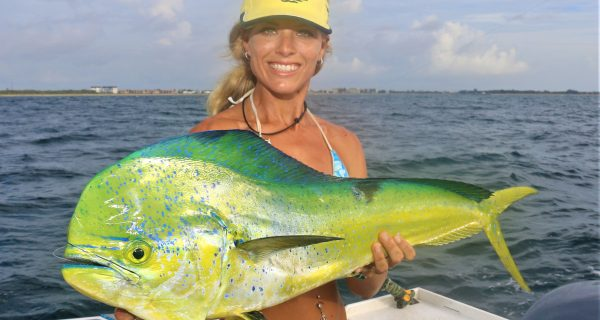 Palm Beach Ins Offs Fishing Reports
