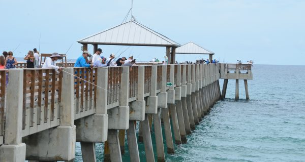 Line of Anglers on the Pier | Photo courtesy of Loggerhead Marine Life Center