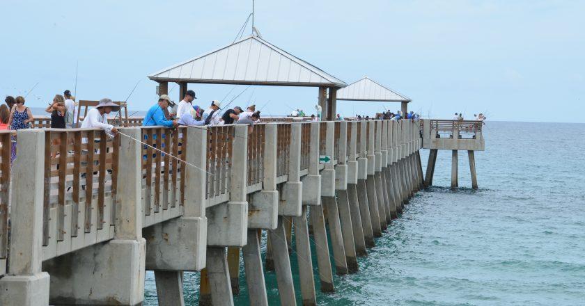 Line of Anglers on the Pier | Photo courtesy of Loggerhead Marine Life Center