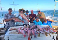 Fort Pierce snappers