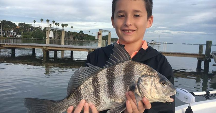 Indian River Fishing - black drum