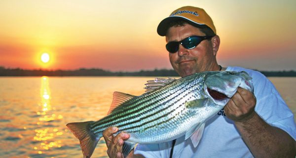 Lake Moultrie & Lake Marion December Stripers