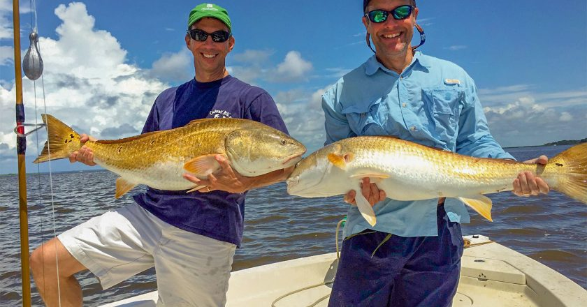 South Carolina Red Drum Shows Up 21 Years Later