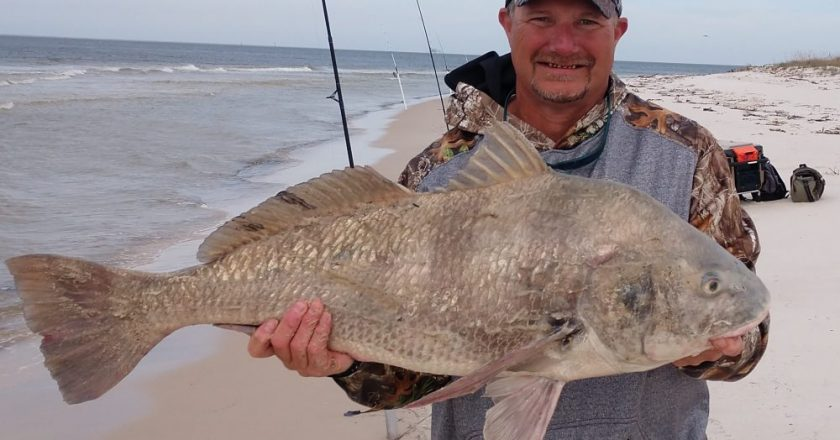 Bryan Rhyde shows off a big drum he caught at Fort Morgan.