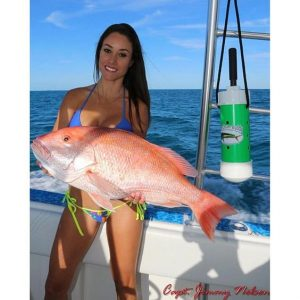 Luzia shows off a beautiful red snapper caught with the help of the The Chum Buddy. Check out: www.fishingwithluiza.com for more on this amazing lady angler.