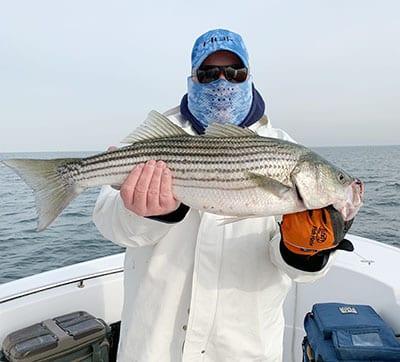 Training, Fishing, Lure Anglers to Freedom Boats | Coastal