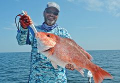 Capt. C-note with a fine snapper caught nearshore with a Speed Drop rig and a nose-hooked live cigar minnow.
