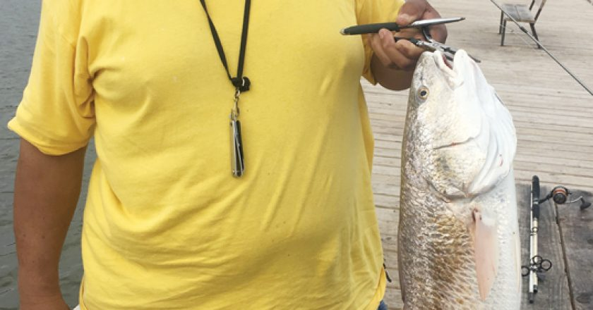 George Hill shows off a nice redfish caught across the street from Ft Gaines.