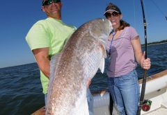 Fernandina Fishing Report