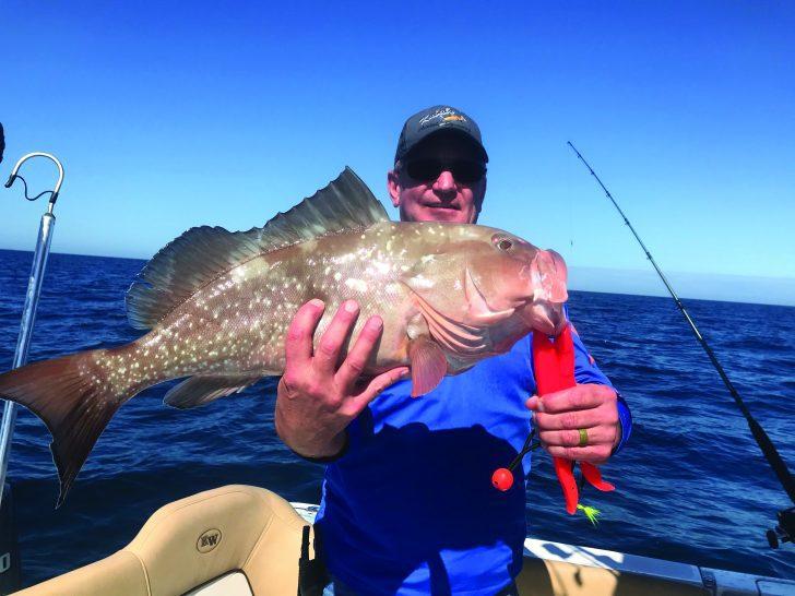 DOG DAY'S OF SUMMER FISHING IN SW FLORIDA | Coastal Angler