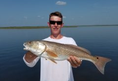 Big Bend Redfish