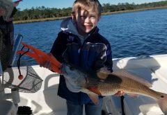 Lanark Redfish