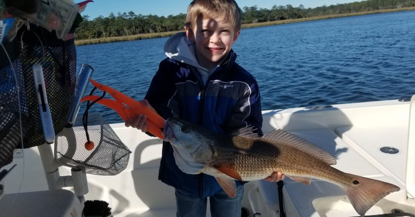 Lanark Redfish