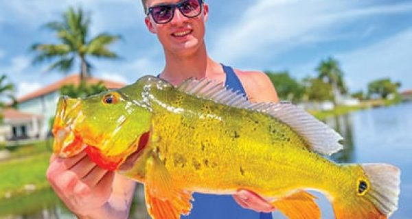 Keegan Huston caught and released a beautiful male peacock while fishing with South Florida Fishing Charters.